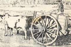 I.-005-Carreta-wóz