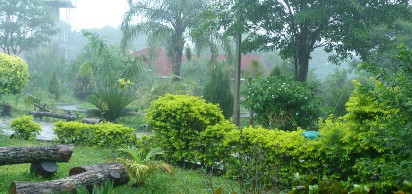 Reportaże misjonarza z Paragwaju